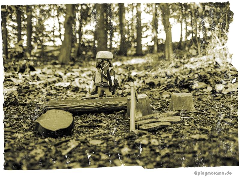 Holzfäller schlägt Bäume für die Holzbeschaffung für die Western Station in den Wäldern