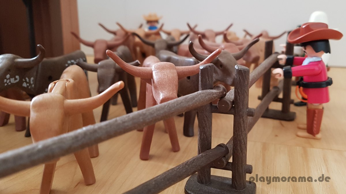 Die Cowboys unterstützen Walter und John bei der Rinderzucht