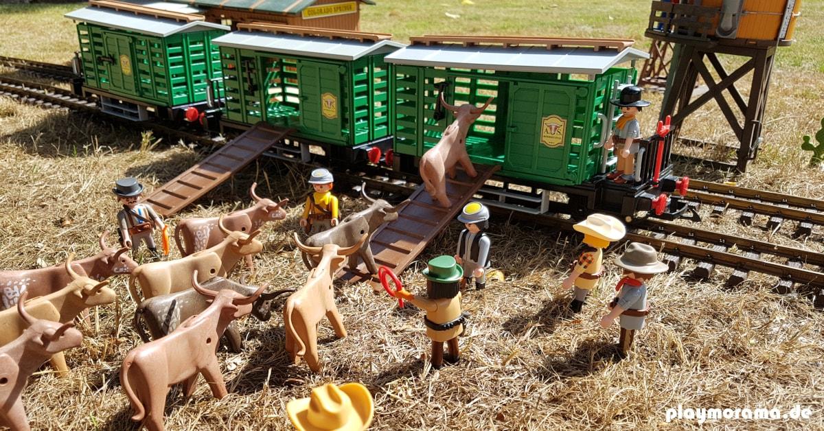 Die Eisenbahn bringt die Western-Viehwagen 4121-A mit den Rindern an ihren Bestimmungsort