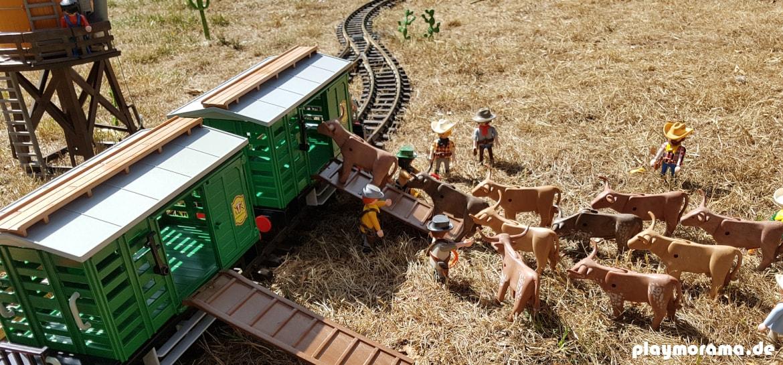 Rinderverladung in den Playmobil Western Viehwaggon